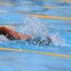 水泳の自由形とは