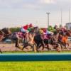 世界の、日本の競馬のGIレースの価値